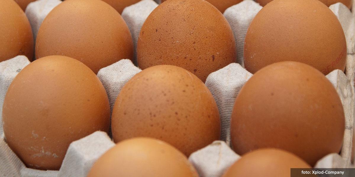 Bagaimana Cara Memilih Telur yang Baik?